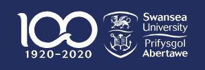 Swansea University